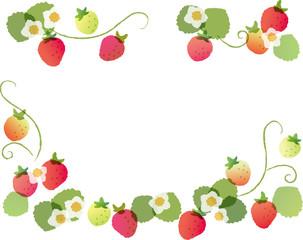 苺のフレーム