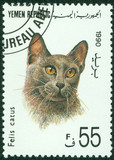stamp printed in Yemen shows Felis catus cat