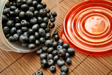 Blueberries in a Storage Container
