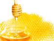 bee honeycomb and honey