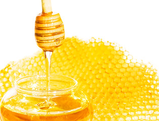 bee honeycomb and honey