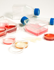 Laboratory for biomedical diagnostic. Labware with human blood.