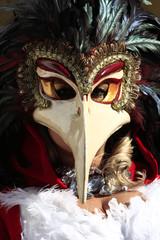 carnevale venezia 2013 maschere
