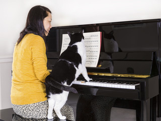 Mature woman playing piano with her family Cat