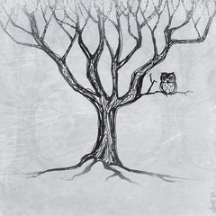 Owl sitting on a tree