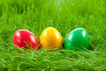 Easter eggs in Fresh Green Grass .