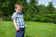 Little boy stands on meadow