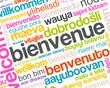 bienvenue dans toutes les langues