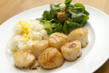 Jakobsmuscheln mit Reis, Safransosse und Feldsalat