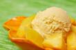 Mangostückchen mit Mangoeis