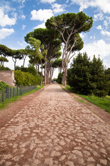 Stone street leading to trees in Palatine Hill at Rome