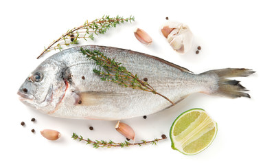 Gilt-head bream with herbs and spices isolated on white