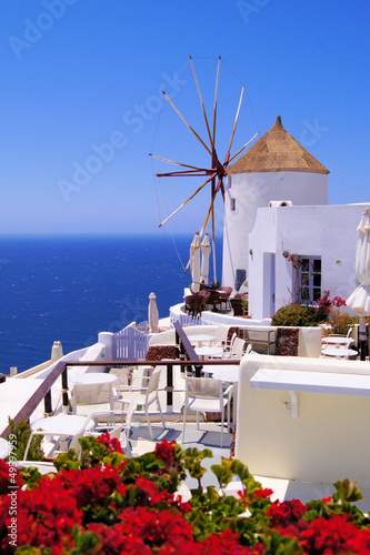 Famous windmill of Santorini, Greece with red flowers