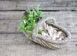 Basket of mushroom, and sweet basil on wooden background