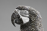 Macaw parrot with a leopard print