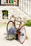 Fototapety bicycle, Provence, France