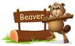 A beaver beside the wooden signboard