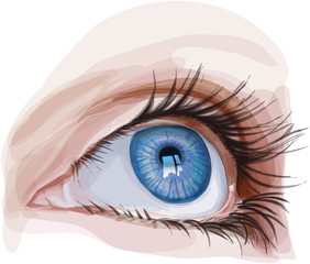 blue eye young girl - vector illustration