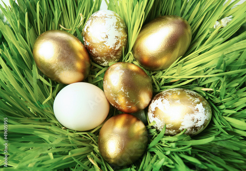 Eggs and grass