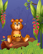 A bear holding a pot of honey at the woods