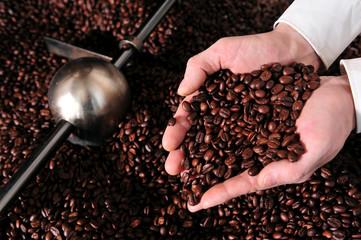 Qualität von Kaffee prüfen - Kaffeerösterei