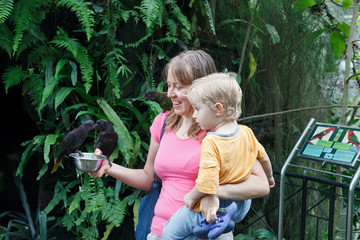 mother and son feeding parrots