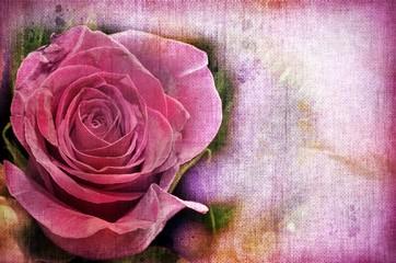 Pink Roses. Vintage Styled.