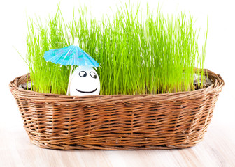 Funny smiling man egg under umbrella in  basket with grass
