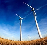 Fototapety parque eolico,desarrollo sostenible.Aerogeneradores