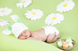 newborn baby girl sleeping on green meadow among daisy