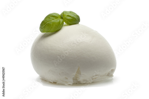 Fresh Mozzarella with basil leaves