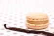Vanilleschote und Macaron