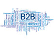 B2B Tag Cloud (business customer services commercial corporate)