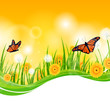 Vector Illustration of a Floral Background with Butterflies