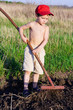 Little boy works with rake