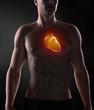 Male heart