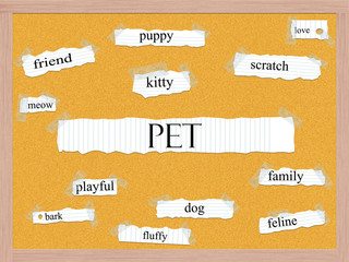 Pet Corkboard Word Concept