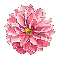 Floral illustration