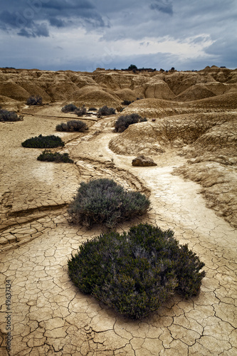 Landscape of the Bardenas, Navarra, Spain