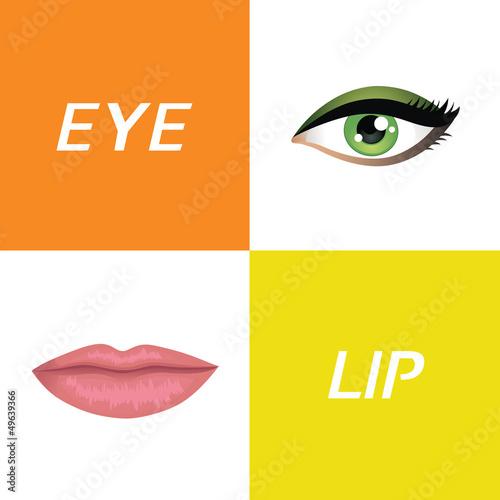 eye and lip