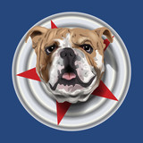 bulldog portrait on blue vector illustration