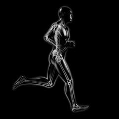 3D-Grafik: Jogging / Skelett Röntgenbild