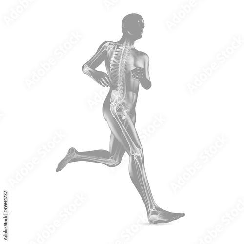 3D-Illustration: Jogging / Skelett Röntgenbild