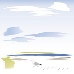 Möve am Strand - Sommer - Urlaub - Meer
