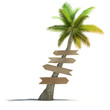 Palm tree with signboards