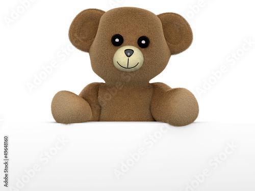 Teddy hält Schild