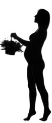 Black silhouette of pregnant woman with basket of flowers