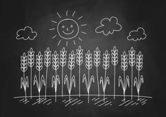 Drawing of wheat field on blackboard