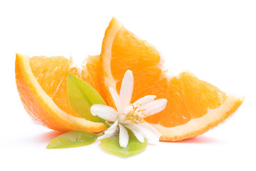Fresh oranges with orange blossom
