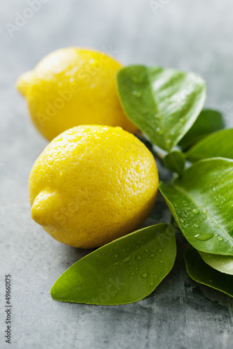 fresh lemon © Liv Friis-larsen